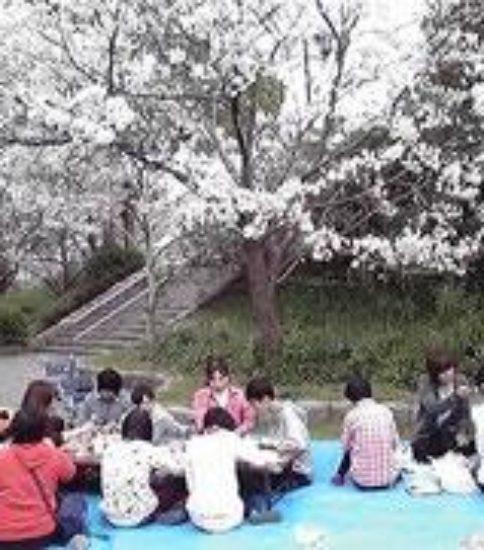 株式会社拓未生活介護あゆむ(仮称) 2017年4月オープン予定! 生活介護事業所生活支援員